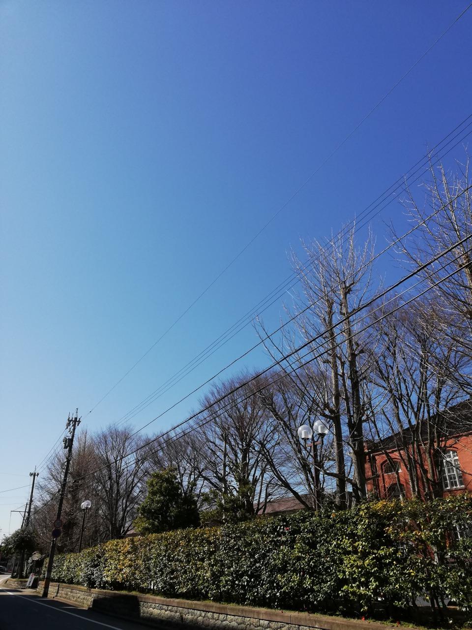 金沢も春に近づいて