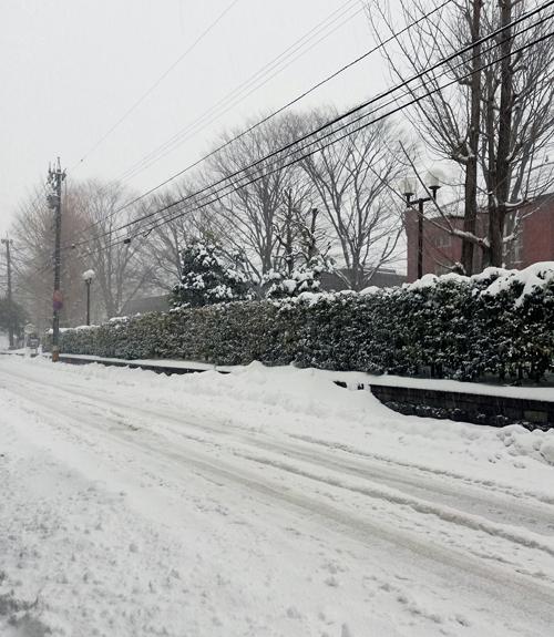 大雪や荒天にともなう発送の遅れ